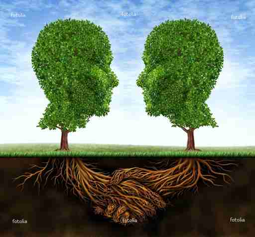 fotolia 41938888 tree heads shaking hands
